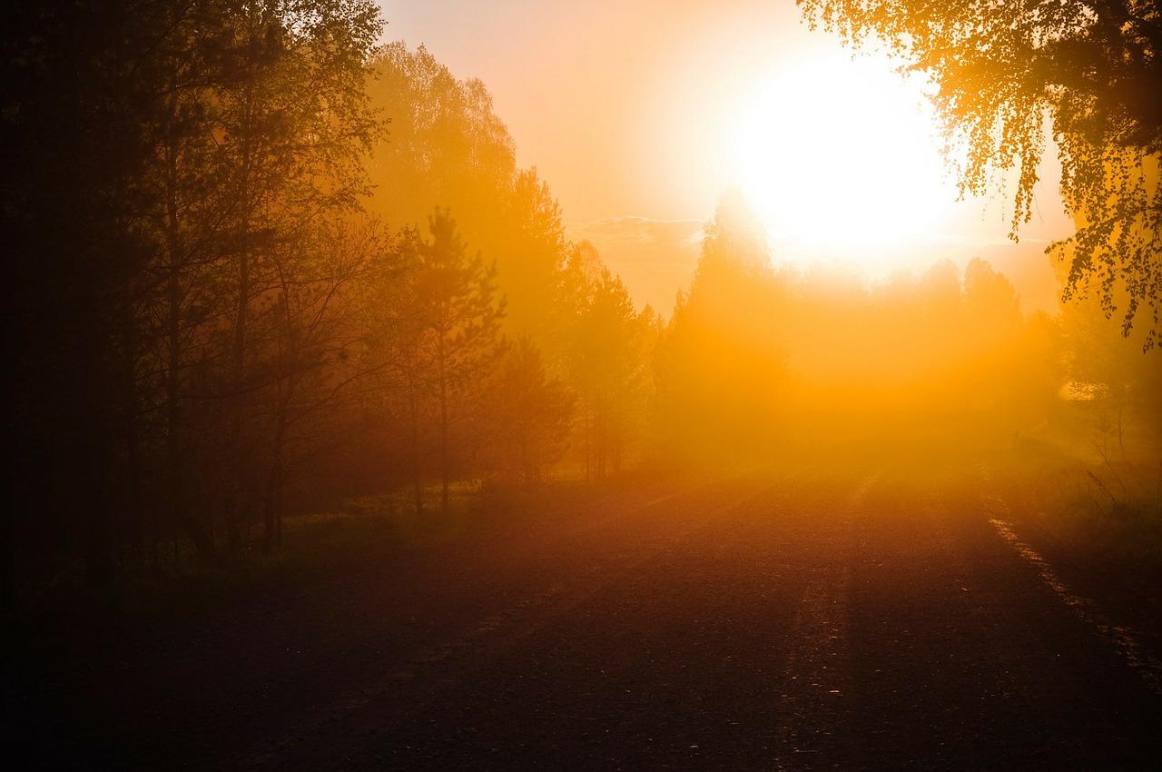 夜明けの光(清晨的日光)|中補836
